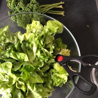 Salade à ciseler + persil